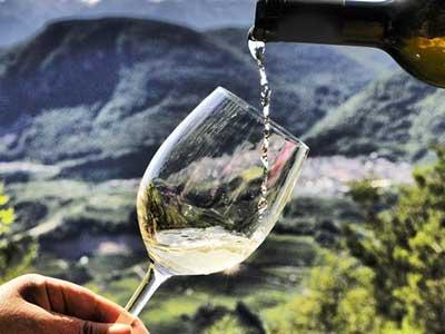 Serata Degustazione Muller Thurgau – Casata Monfort